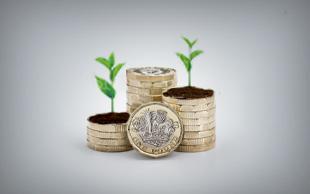 The ESG Portfolio